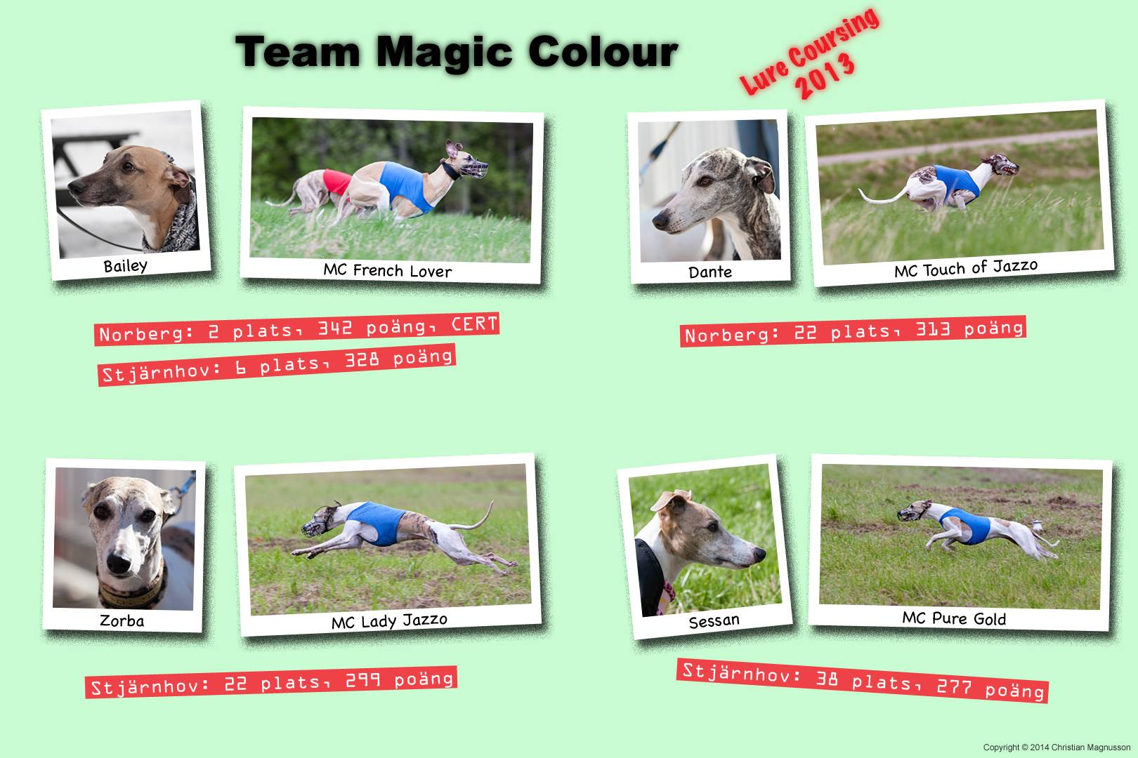 Team Magic Colour LC