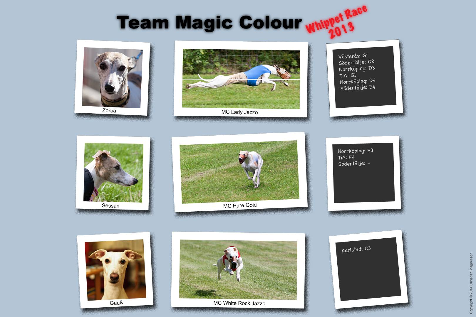 Team Magic Colour
